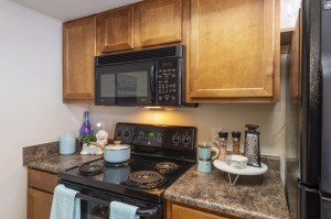 Two Bedroom Apartments for Rent in Northwest Houston, TX - Model Kitchen (2)